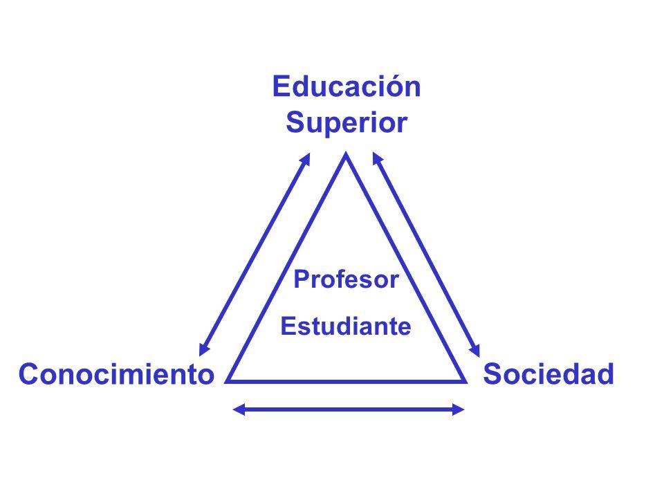 Sociedad Educación Superior Conocimiento Profesor Estudiante
