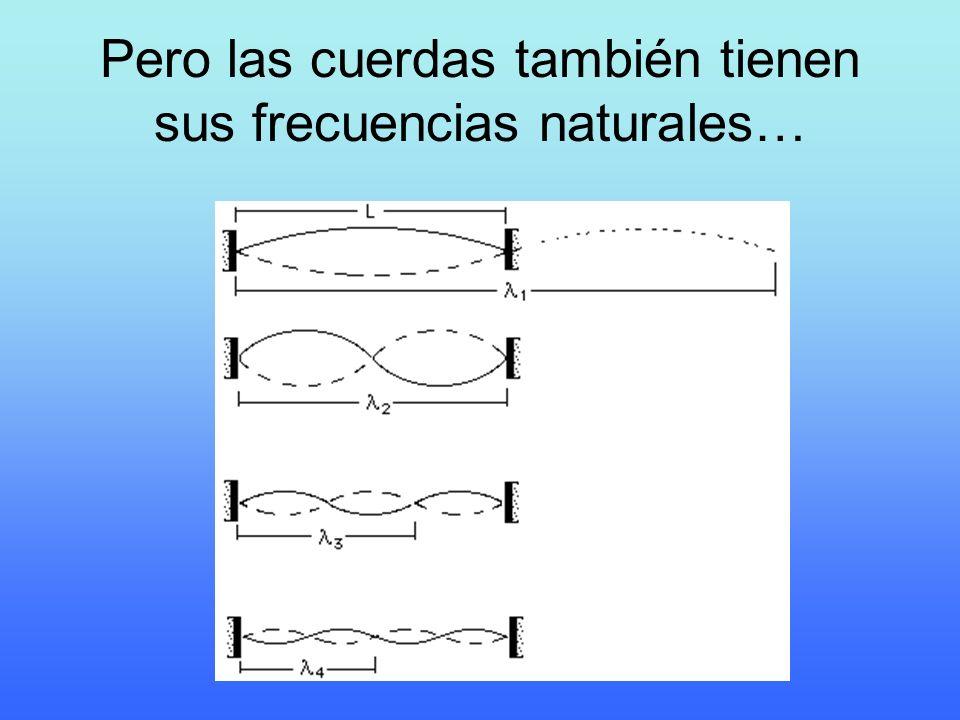 Pero las cuerdas también tienen sus frecuencias naturales…