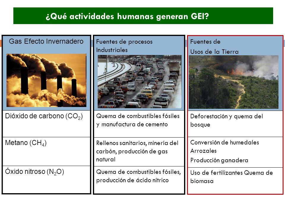 Gas Efecto Invernadero Dióxido de carbono (CO 2 ) Metano (CH 4 ) Óxido nitroso (N 2 O) ¿Qué actividades humanas generan GEI? Uso de fertilizantes Quem