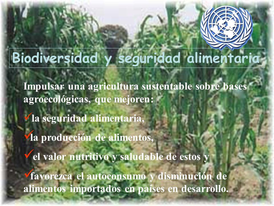 Biodiversidad y seguridad alimentaria Impulsar una agricultura sustentable sobre bases agroecológicas, que mejoren: la seguridad alimentaria, la produ