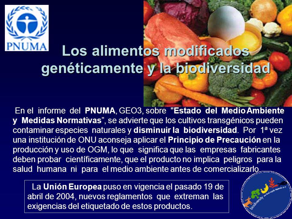 Los alimentos modificados genéticamente y la biodiversidad En el informe del PNUMA, GEO3, sobre