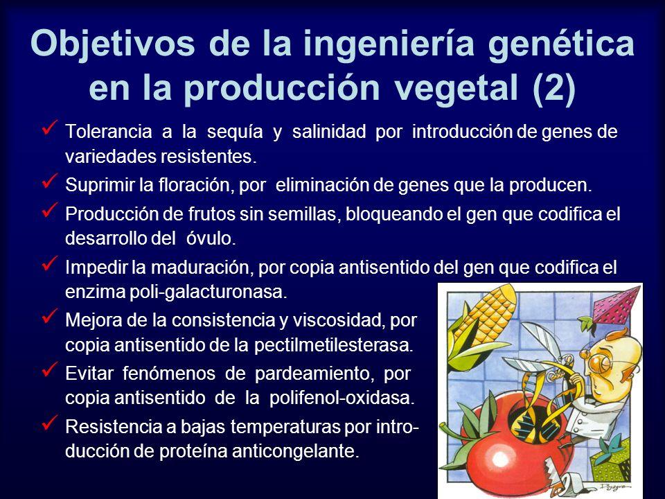 Objetivos de la ingeniería genética en la producción vegetal (2) Tolerancia a la sequía y salinidad por introducción de genes de variedades resistente