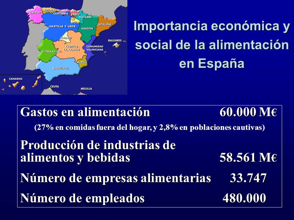 Importancia económica y social de la alimentación en España Gastos en alimentación 60.000 M Gastos en alimentación 60.000 M (27% en comidas fuera del