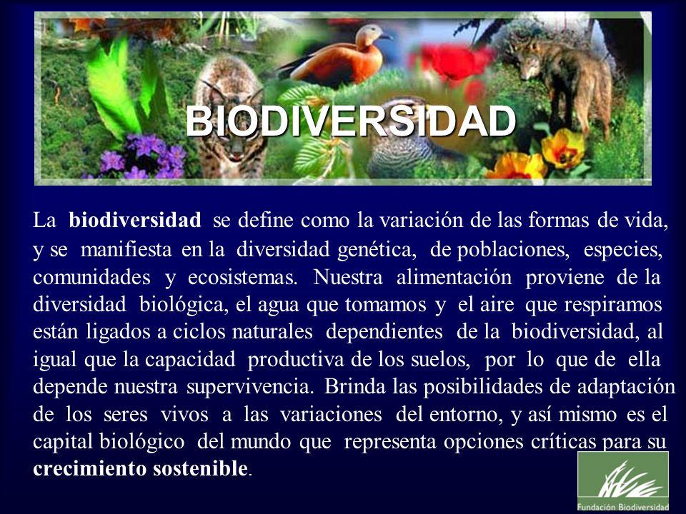 La biodiversidad se define como la variación de las formas de vida, y se manifiesta en la diversidad genética, de poblaciones, especies, comunidades y