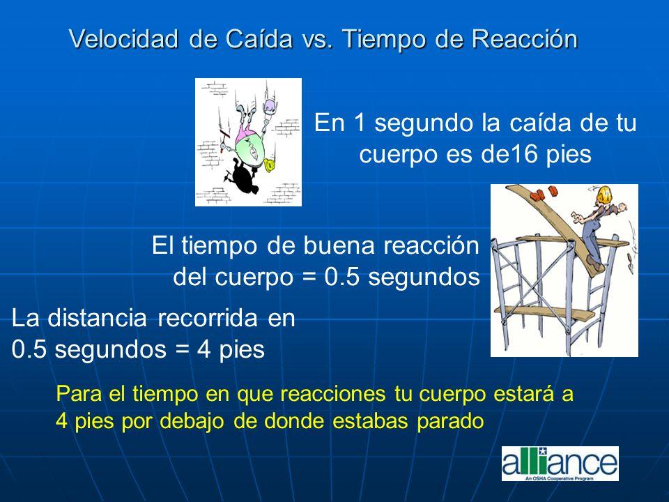 El tiempo de buena reacción del cuerpo = 0.5 segundos La distancia recorrida en 0.5 segundos = 4 pies En 1 segundo la caída de tu cuerpo es de16 pies