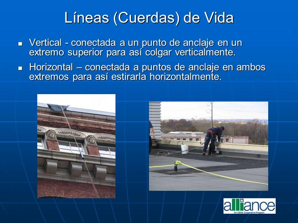 Líneas (Cuerdas) de Vida Vertical - conectada a un punto de anclaje en un extremo superior para así colgar verticalmente. Vertical - conectada a un pu