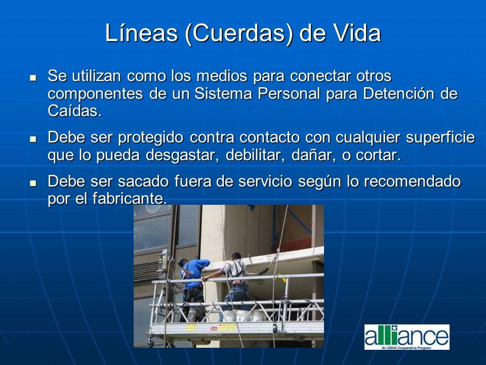 Líneas (Cuerdas) de Vida Se utilizan como los medios para conectar otros componentes de un Sistema Personal para Detención de Caídas. Se utilizan como