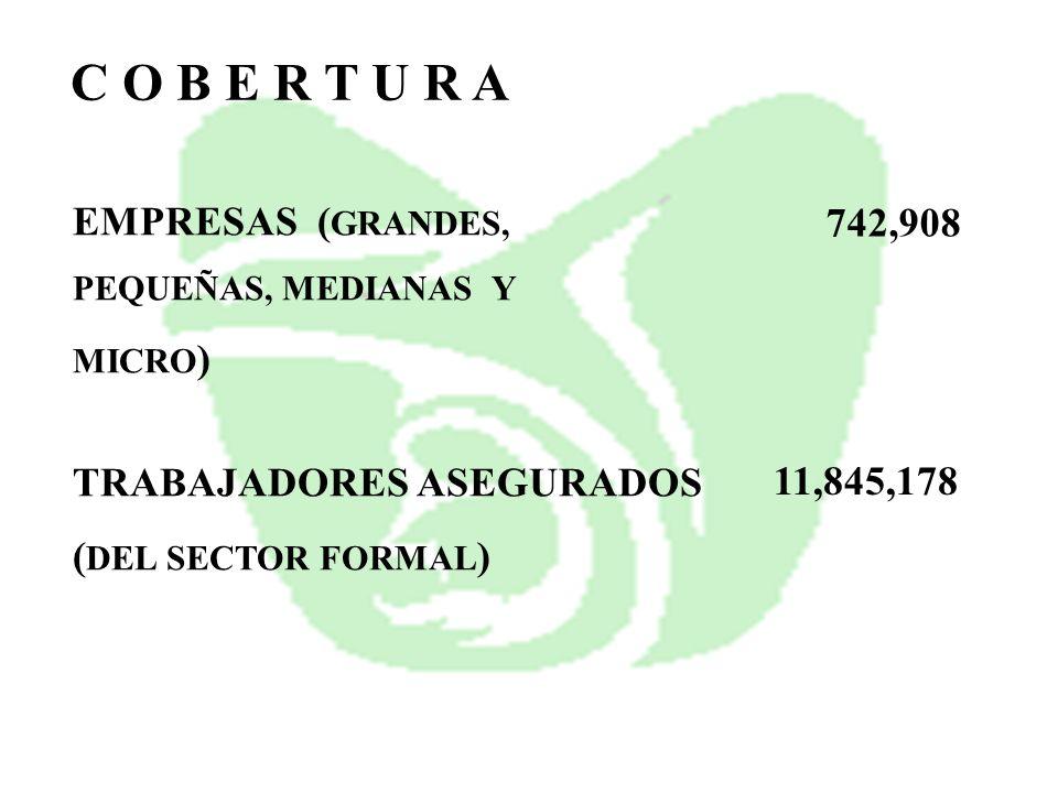 EMPRESAS ( GRANDES, PEQUEÑAS, MEDIANAS Y MICRO ) TRABAJADORES ASEGURADOS ( DEL SECTOR FORMAL ) C O B E R T U R A 11,845,178 742,908