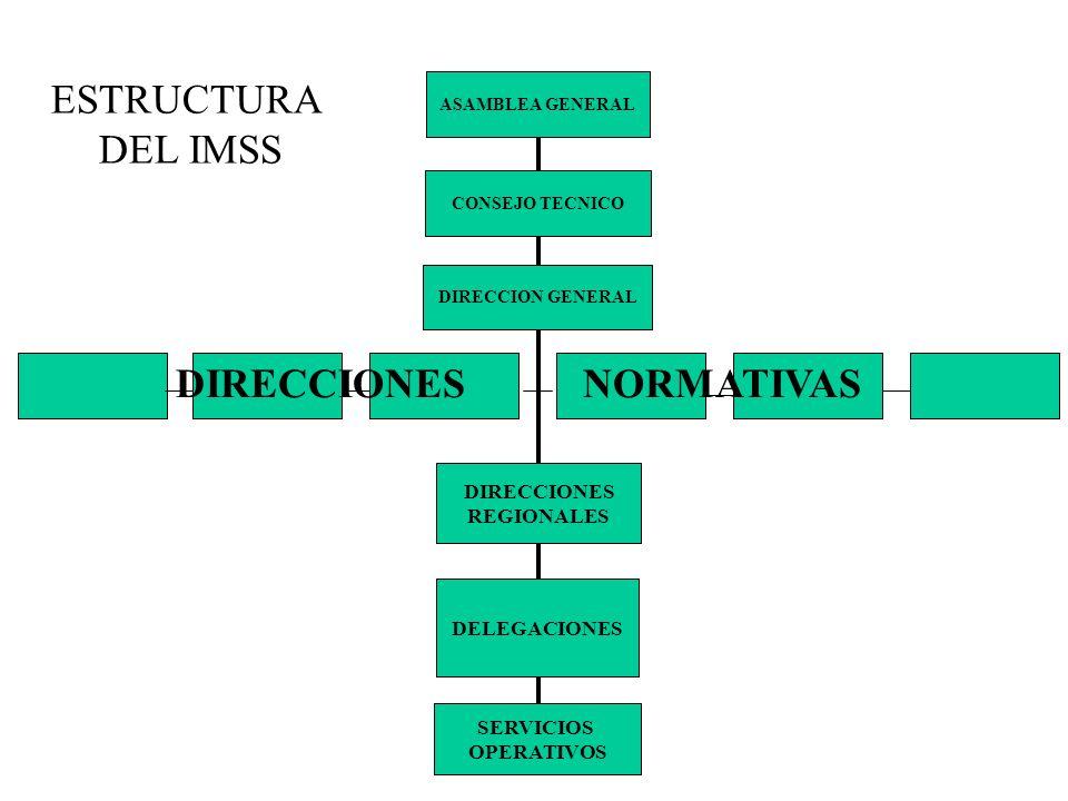ESTRUCTURA DEL IMSS ASAMBLEA GENERAL CONSEJO TECNICO DIRECCION GENERAL DIRECCIONES REGIONALES DELEGACIONES SERVICIOS OPERATIVOS DIRECCIONES NORMATIVAS