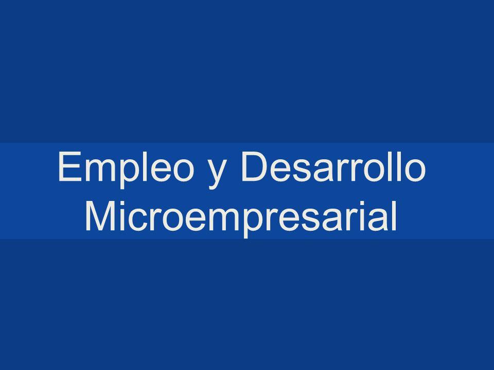 Empleo y Desarrollo Microempresarial