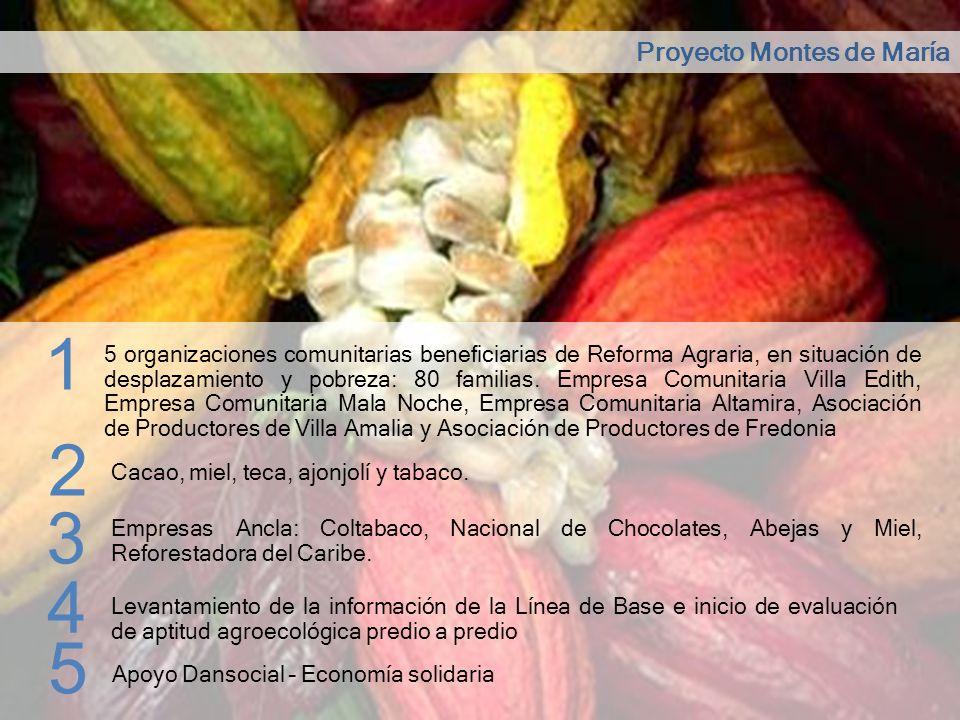 Proyecto Montes de María 1 5 organizaciones comunitarias beneficiarias de Reforma Agraria, en situación de desplazamiento y pobreza: 80 familias. Empr