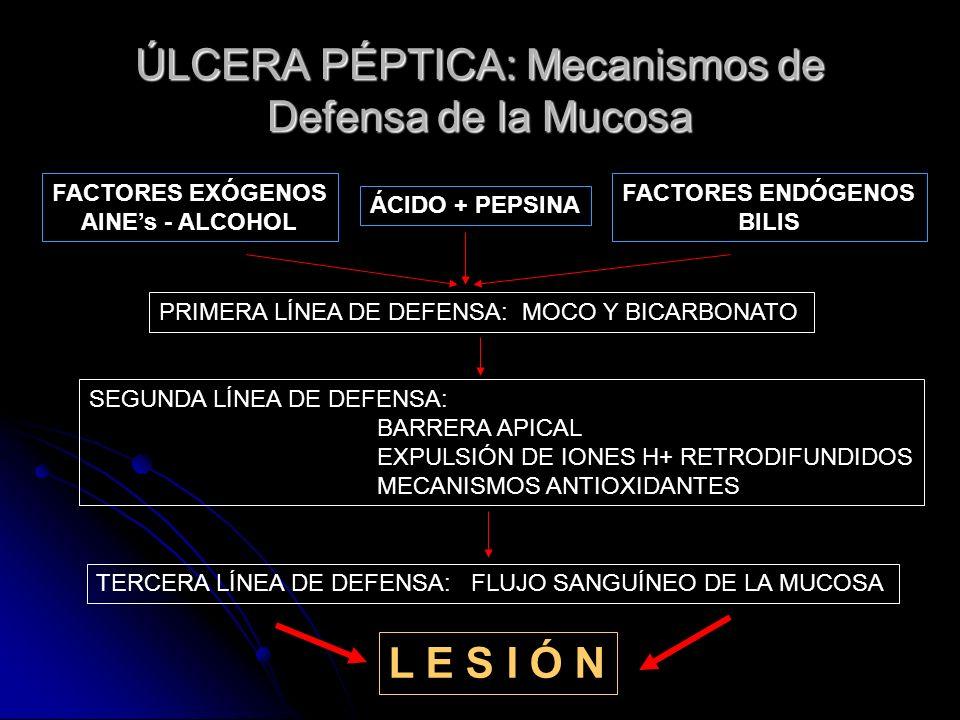 ÚLCERA PÉPTICA: Mecanismos de Defensa de la Mucosa FACTORES EXÓGENOS AINEs - ALCOHOL ÁCIDO + PEPSINA FACTORES ENDÓGENOS BILIS PRIMERA LÍNEA DE DEFENSA