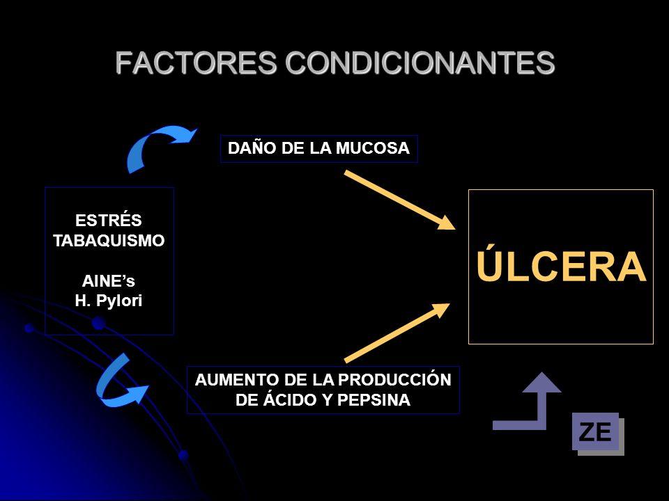 FACTORES CONDICIONANTES ESTRÉS TABAQUISMO AINEs H. Pylori DAÑO DE LA MUCOSA AUMENTO DE LA PRODUCCIÓN DE ÁCIDO Y PEPSINA ÚLCERA ZE