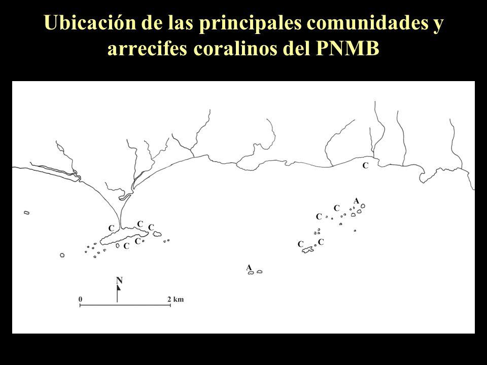 Ubicación de las principales comunidades y arrecifes coralinos del PNMB
