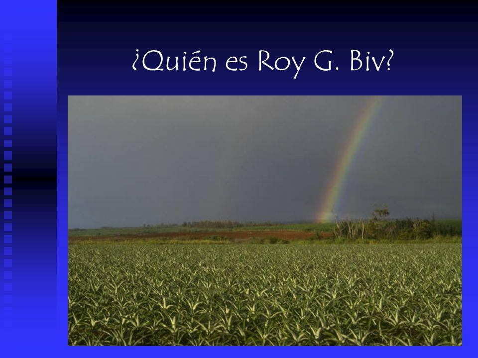 ¿Quién es Roy G. Biv?