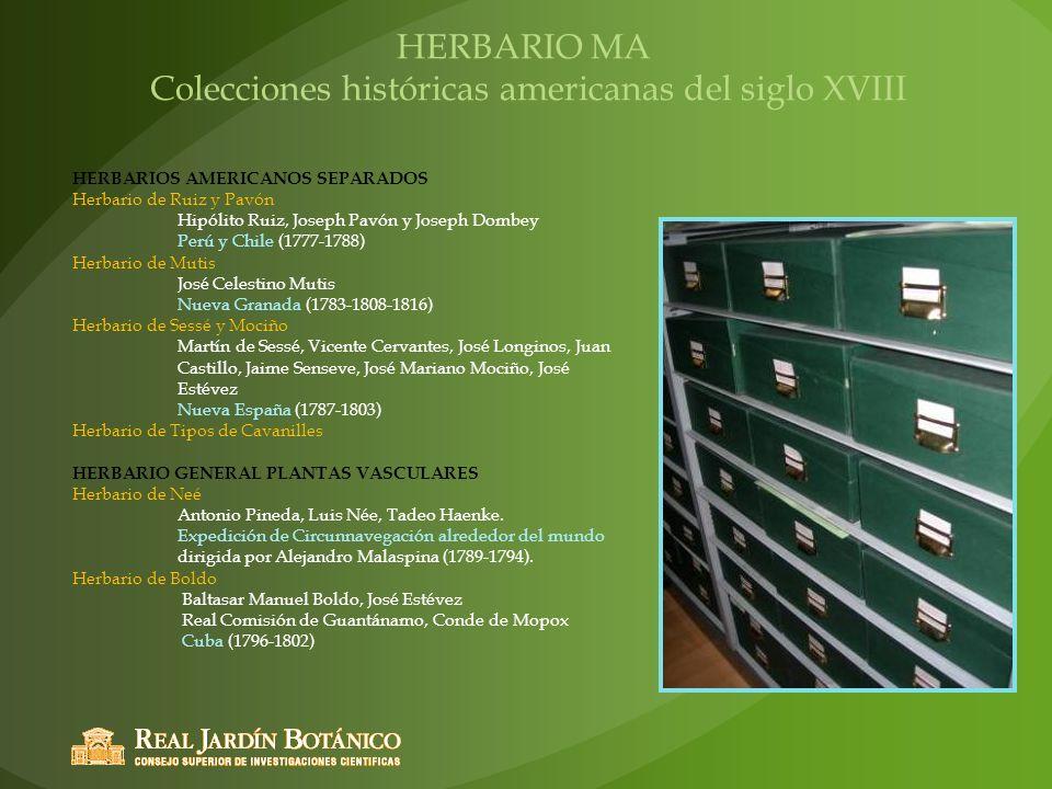HERBARIO MA Colecciones históricas americanas del siglo XVIII HERBARIOS AMERICANOS SEPARADOS Herbario de Ruiz y Pavón Hipólito Ruiz, Joseph Pavón y Jo