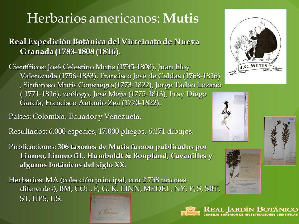 Herbarios americanos: Mutis Real Expedición Botánica del Virreinato de Nueva Granada (1783-1808 (1816). Científicos: José Celestino Mutis (1735-1808),