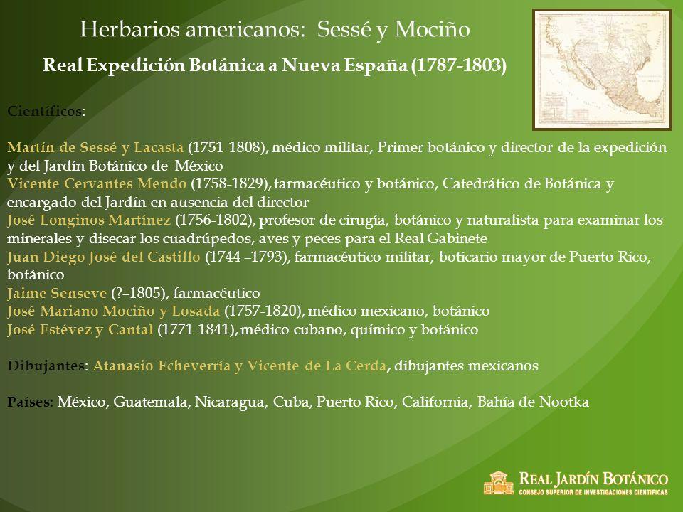 Herbarios americanos: Sessé y Mociño Real Expedición Botánica a Nueva España (1787-1803) Científicos : Martín de Sessé y Lacasta (1751-1808), médico m