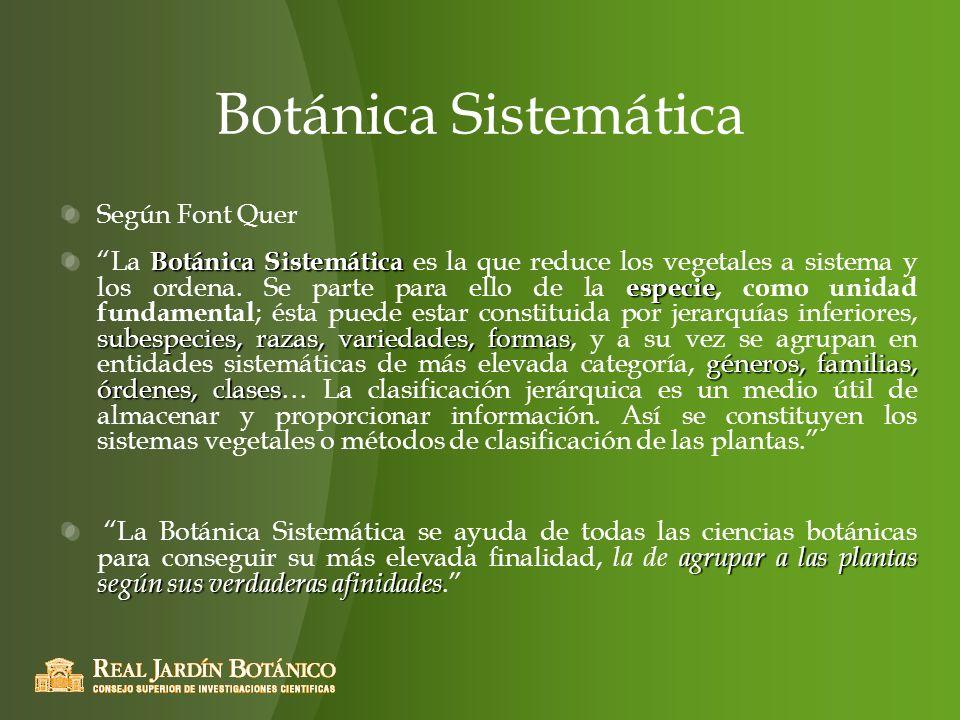 Botánica Sistemática Según Font Quer Botánica Sistemática especie subespecies, razas, variedades, formas géneros, familias, órdenes, clases La Botánic