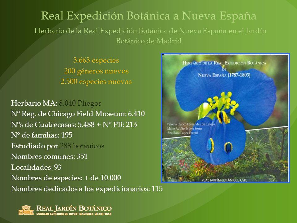 Real Expedición Botánica a Nueva España Herbario de la Real Expedición Botánica de Nueva España en el Jardín Botánico de Madrid 3.663 especies 200 gén