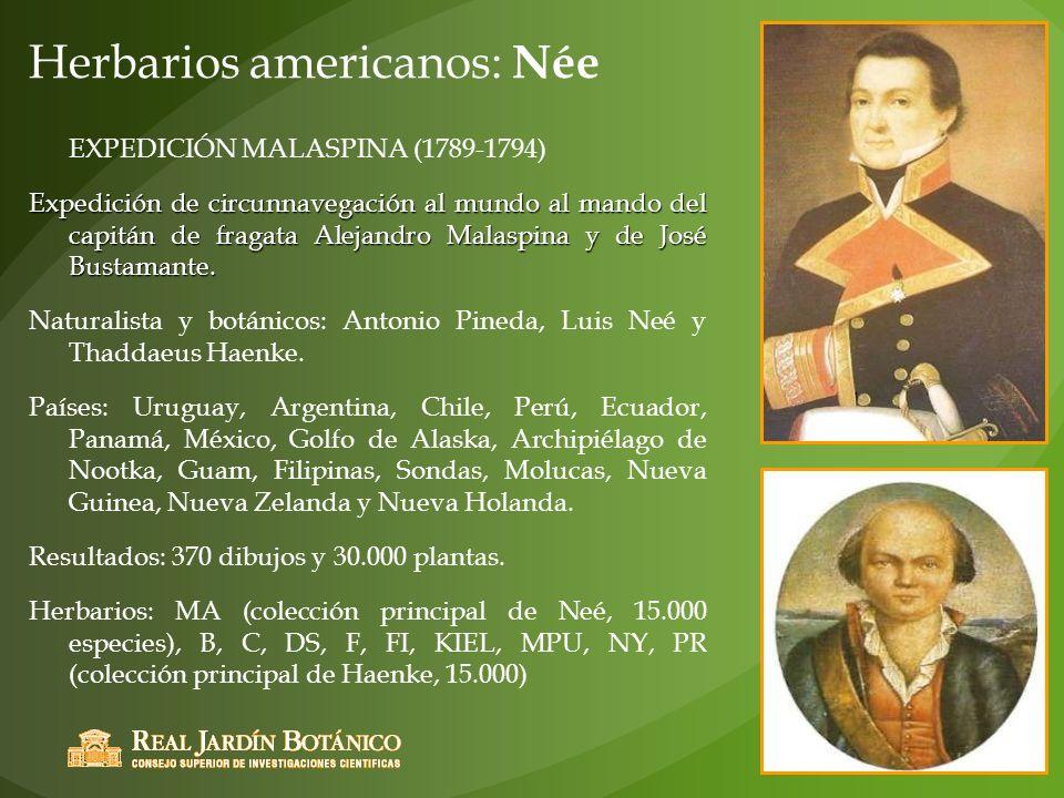 Herbarios americanos: Née EXPEDICIÓN MALASPINA (1789-1794) Expedición de circunnavegación al mundo al mando del capitán de fragata Alejandro Malaspina