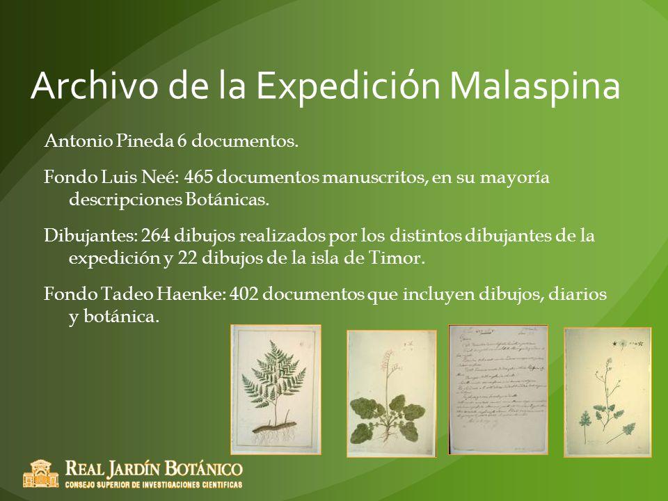 Archivo de la Expedición Malaspina Antonio Pineda 6 documentos. Fondo Luis Neé: 465 documentos manuscritos, en su mayoría descripciones Botánicas. Dib