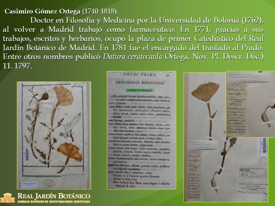 Casimiro Gómez Ortega (1740-1818). Casimiro Gómez Ortega (1740-1818). Doctor en Filosofía y Medicina por la Universidad de Bolonia (1762), al volver a