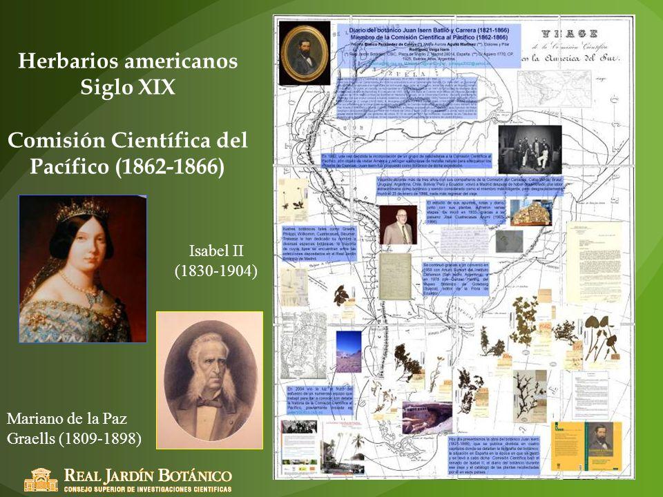 Herbarios americanos Siglo XIX Comisión Científica del Pacífico (1862-1866) Isabel II (1830-1904) Mariano de la Paz Graells (1809-1898)