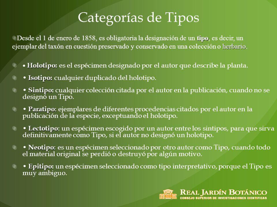 Categorías de Tipos Holotipo: Holotipo: es el espécimen designado por el autor que describe la planta. Isotipo: Isotipo: cualquier duplicado del holot