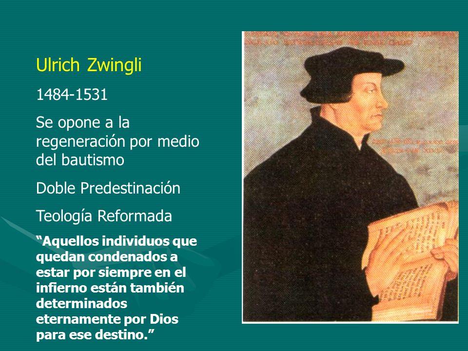 Ulrich Zwingli 1484-1531 Se opone a la regeneración por medio del bautismo Doble Predestinación Teología Reformada Aquellos individuos que quedan cond