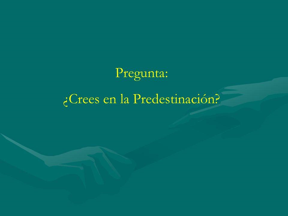 Pregunta: ¿Crees en la Predestinación?
