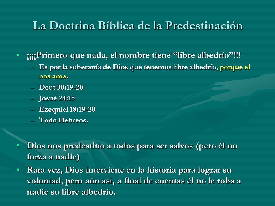 La Doctrina Bíblica de la Predestinación ¡¡¡¡Primero que nada, el nombre tiene libre albedrío!!!¡¡¡¡Primero que nada, el nombre tiene libre albedrío!!