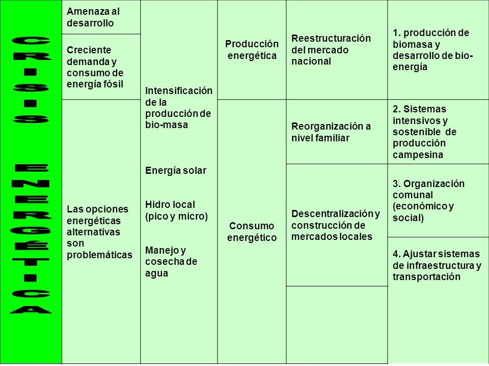 11 Amenaza al desarrollo Intensificación de la producción de bio-masa Energía solar Hidro local (pico y micro) Manejo y cosecha de agua Producción ene