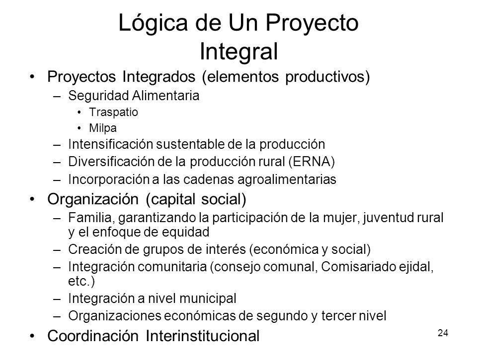 24 Lógica de Un Proyecto Integral Proyectos Integrados (elementos productivos) –Seguridad Alimentaria Traspatio Milpa –Intensificación sustentable de