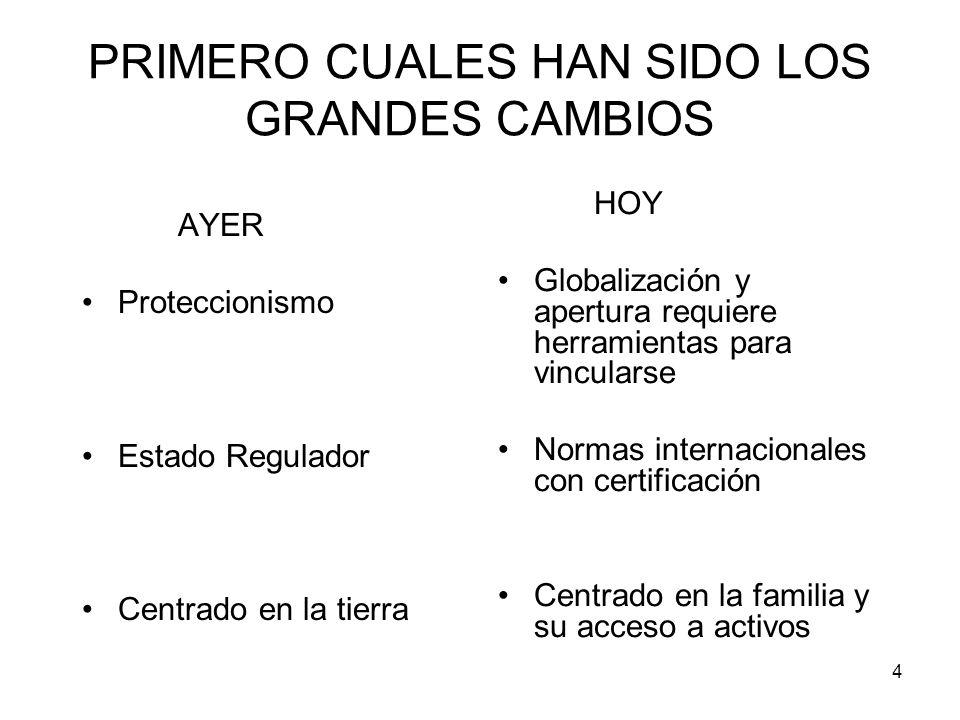 4 PRIMERO CUALES HAN SIDO LOS GRANDES CAMBIOS AYER Proteccionismo Estado Regulador Centrado en la tierra HOY Globalización y apertura requiere herrami
