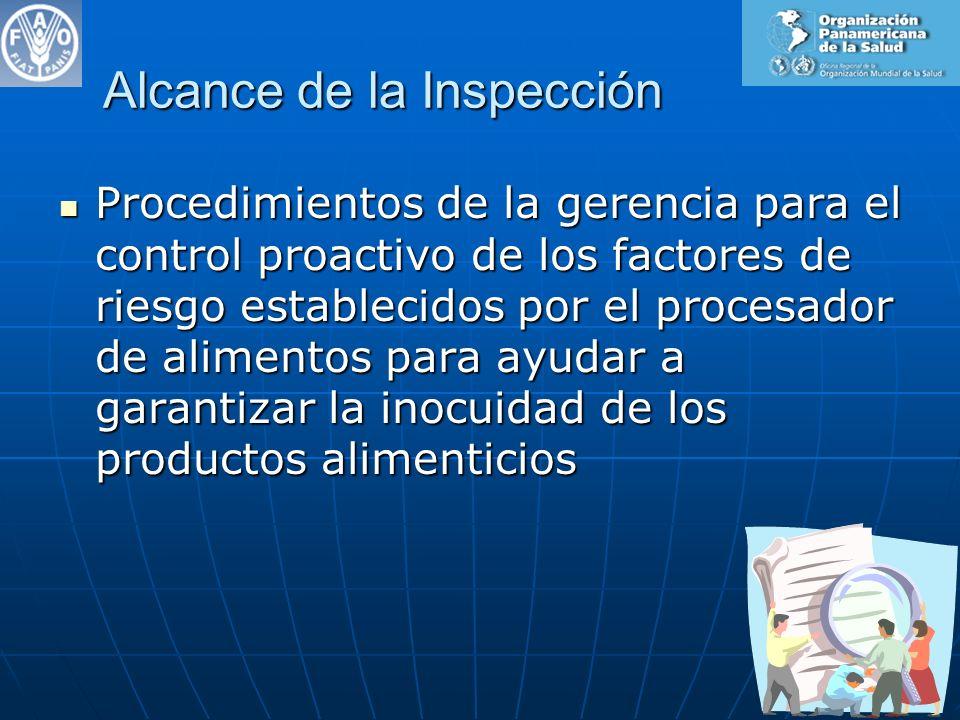 Organización de la Inspección 1.Enfoque de la inspección 2.