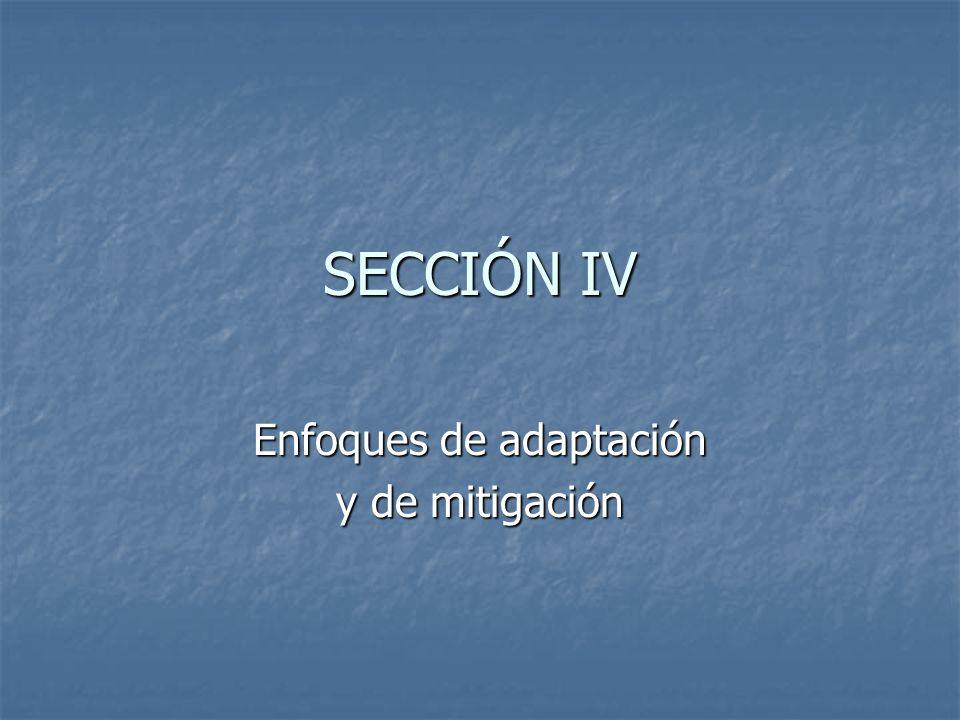 SECCIÓN IV Enfoques de adaptación y de mitigación