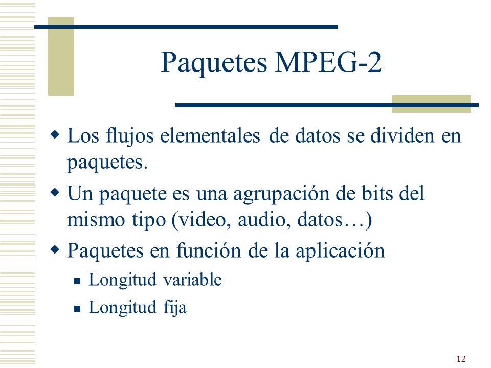 12 Paquetes MPEG-2 Los flujos elementales de datos se dividen en paquetes. Un paquete es una agrupación de bits del mismo tipo (video, audio, datos…)