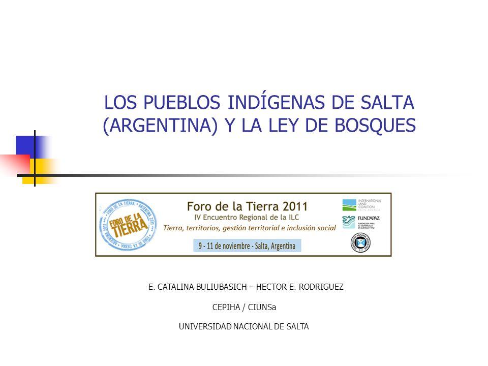 LOS PUEBLOS INDÍGENAS DE SALTA (ARGENTINA) Y LA LEY DE BOSQUES E. CATALINA BULIUBASICH – HECTOR E. RODRIGUEZ CEPIHA / CIUNSa UNIVERSIDAD NACIONAL DE S