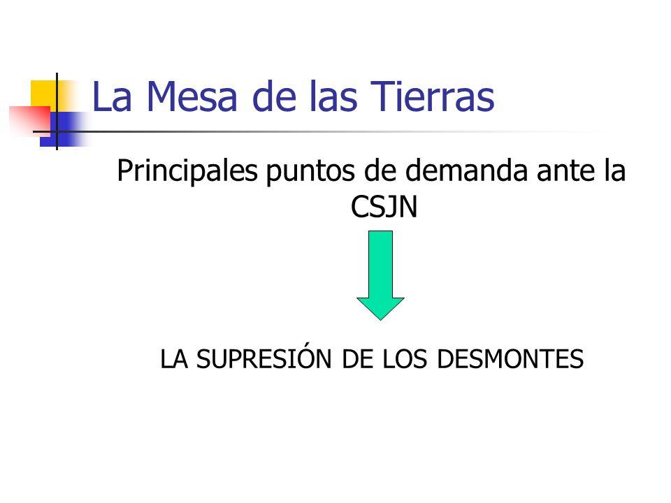 La Mesa de las Tierras Principales puntos de demanda ante la CSJN LA SUPRESIÓN DE LOS DESMONTES