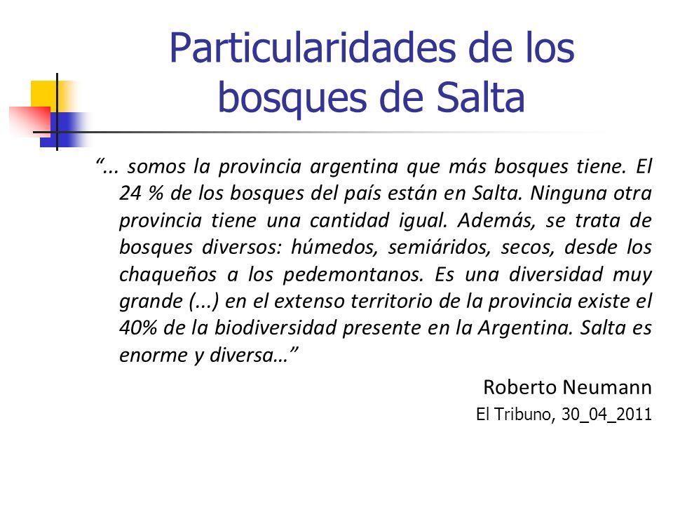 Particularidades de los bosques de Salta... somos la provincia argentina que más bosques tiene. El 24 % de los bosques del país están en Salta. Ningun