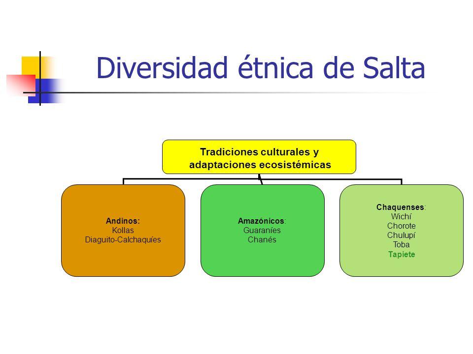 Diversidad étnica de Salta Tradiciones culturales y adaptaciones ecosistémicas Andinos: Kollas Diaguito-Calchaquíes Amazónicos: Guaraníes Chanés Chaqu