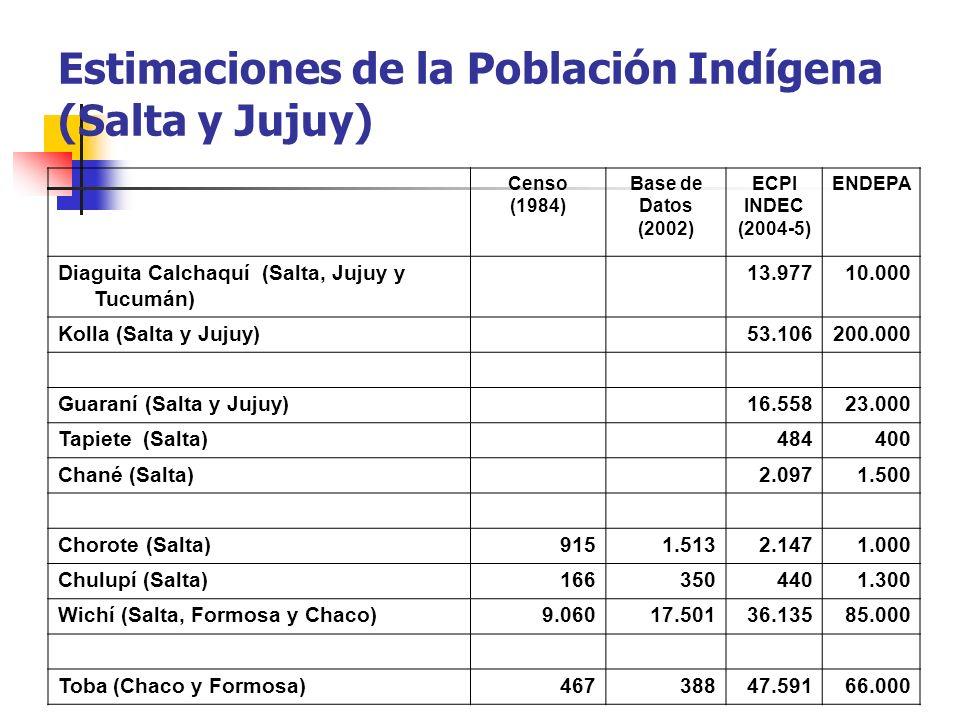 Estimaciones de la Población Indígena (Salta y Jujuy) Censo (1984) Base de Datos (2002) ECPI INDEC (2004-5) ENDEPA Diaguita Calchaquí (Salta, Jujuy y