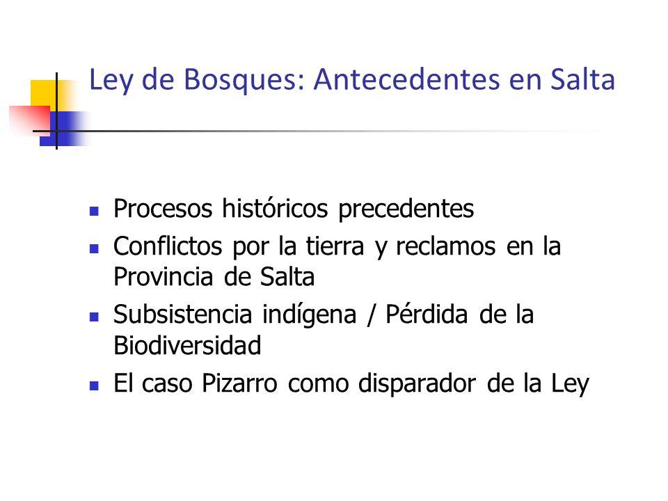 Procesos históricos precedentes Conflictos por la tierra y reclamos en la Provincia de Salta Subsistencia indígena / Pérdida de la Biodiversidad El ca