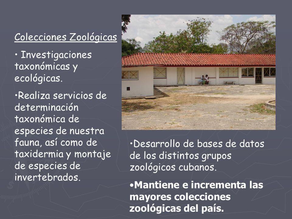 Colecciones Zoológicas Investigaciones taxonómicas y ecológicas.