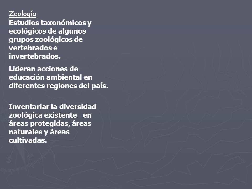 Zoología Estudios taxonómicos y ecológicos de algunos grupos zoológicos de vertebrados e invertebrados.