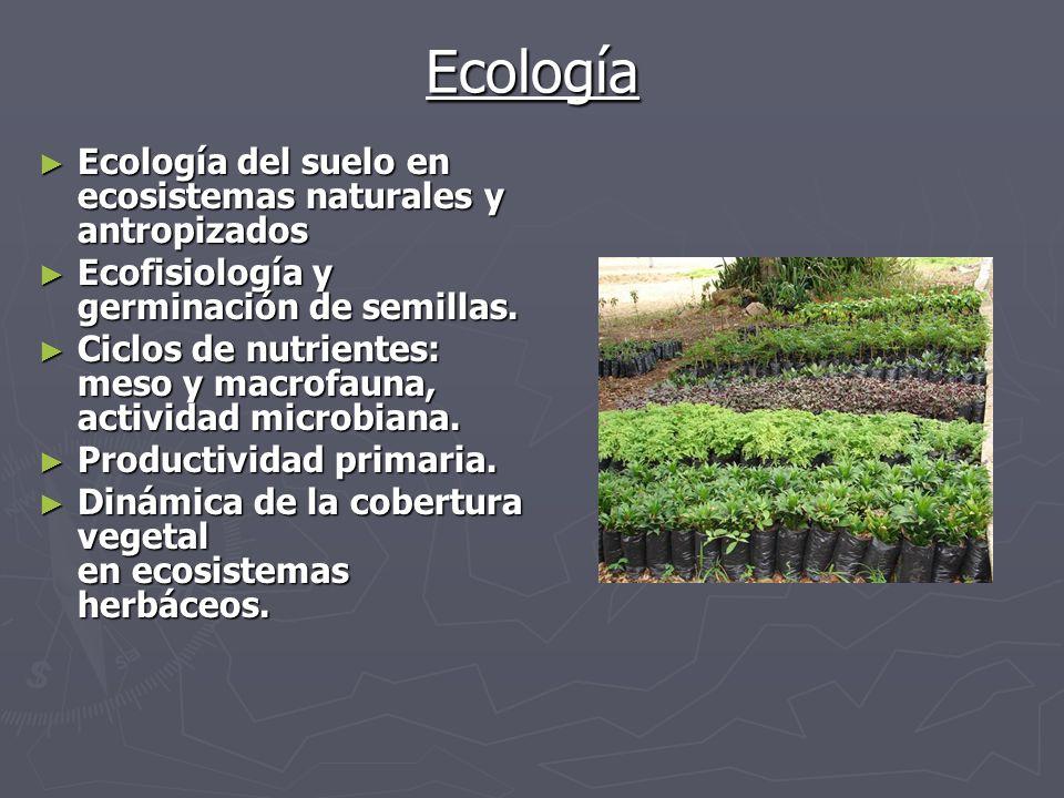 SERVICIOS Paisajismo.Identificación de especies biológicas.