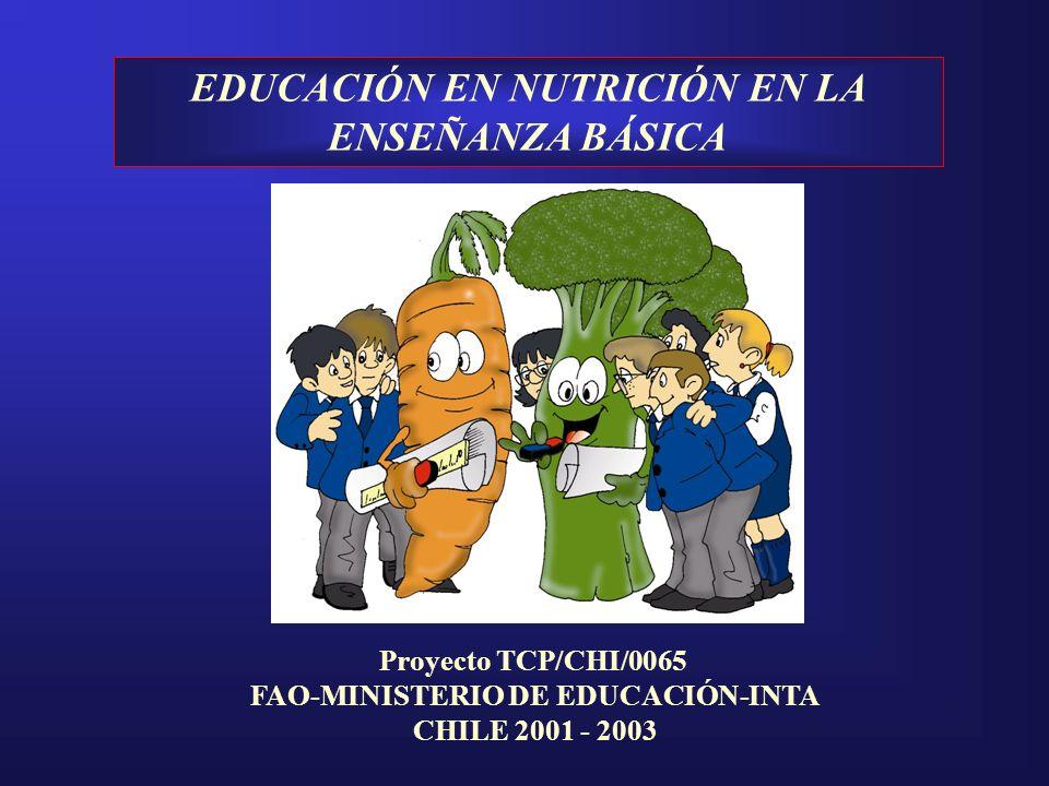 EDUCACIÓN EN NUTRICIÓN EN LA ENSEÑANZA BÁSICA Proyecto TCP/CHI/0065 FAO-MINISTERIO DE EDUCACIÓN-INTA CHILE 2001 - 2003