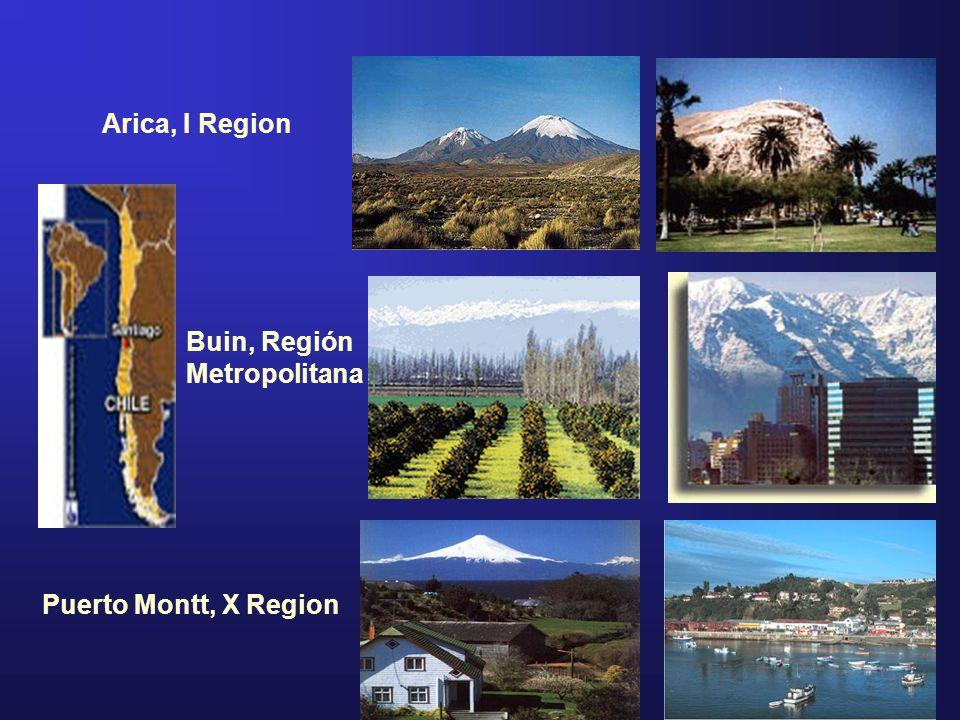 Arica, I Region Puerto Montt, X Region Buin, Región Metropolitana