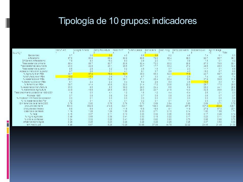 Tipología de 10 grupos: indicadores